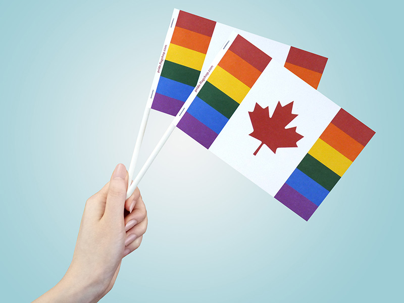Canada Pride Paper Flags