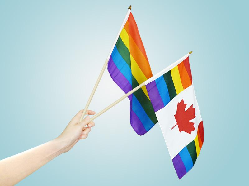 Pride Stick Flags